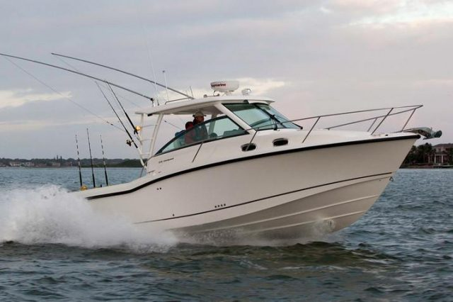 Boston Whaler August Promotion